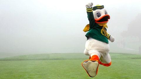 The Oregon Duck