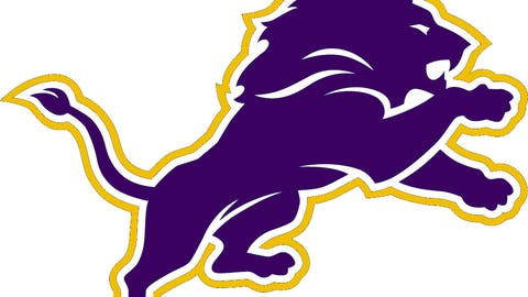 Detroit Lions (Vikings colors)