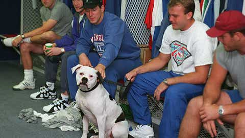 Boomer hangs out with the boys
