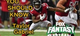 Fantasy Football: you should know this about Taylor Gabriel