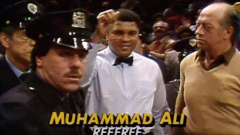 Wrestlemania I, 1985 (Madison Square Garden)