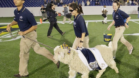 Bill the Goat — Navy Midshipmen