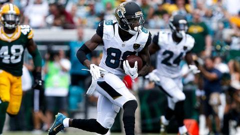 Allen Hurns, WR, Jaguars (concussion)