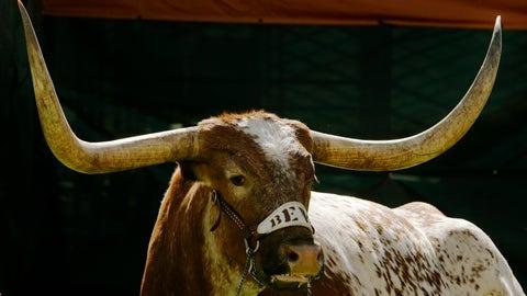 Bevo — Texas Longhorns