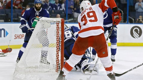 Detroit Red Wings right wing Anthony Mantha (39) prepares to tuck the puck past Tampa Bay Lightning goalie Andrei Vasilevskiy (88), of Russia, for a goal during the third period of an NHL hockey game Tuesday, Dec. 20, 2016, in Tampa, Fla. The Lightning won the game 4-1. (AP Photo/Chris O'Meara)