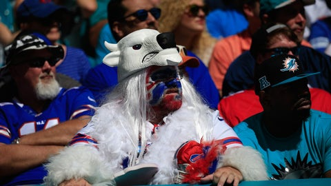 A Bill leaves the wild to attend a football game