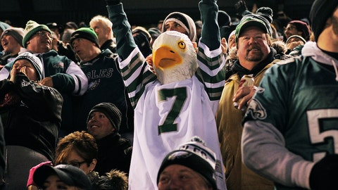 An Eagles fan with a bird's eye view of the game (sorry)