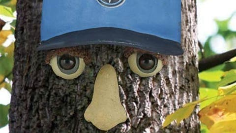Tennessee Titans Tree Resin Face