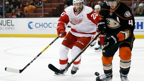 Anaheim Ducks defenseman Cam Fowler (4) steals the puck away from Detroit Red Wings left wing Drew Miller (20) during the first period of an NHL hockey game in Anaheim, Calif., Wednesday, Jan. 4, 2017. (AP Photo/Alex Gallardo)