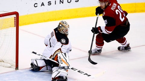 Anaheim Ducks goalie Jonathan Bernier (1) makes a save on a shot by Arizona Coyotes left wing Brendan Perlini (29) during the second period of an NHL hockey game Saturday, Jan. 14, 2017, in Glendale, Ariz. (AP Photo/Ross D. Franklin)