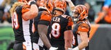 Bengals: Can Free Agency Signings Fill The Holes?