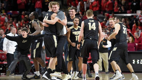 Purdue guard P.J. Thompson (11), guard Ryan Cline (14), Dakota Mathias (31) and others celebrate their 73-72 win over Maryland after an NCAA basketball game, Saturday, Feb. 4, 2017, in College Park, Md. (AP Photo/Nick Wass)