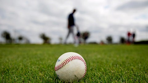 A baseball sits on the field as Boston Red Sox players workout during baseball spring training in Fort Myers, Fla., Monday, Feb. 13, 2017. (AP Photo/David Goldman)