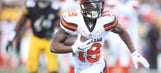 Cleveland Browns: Looking At the Wide Receivers From 2016