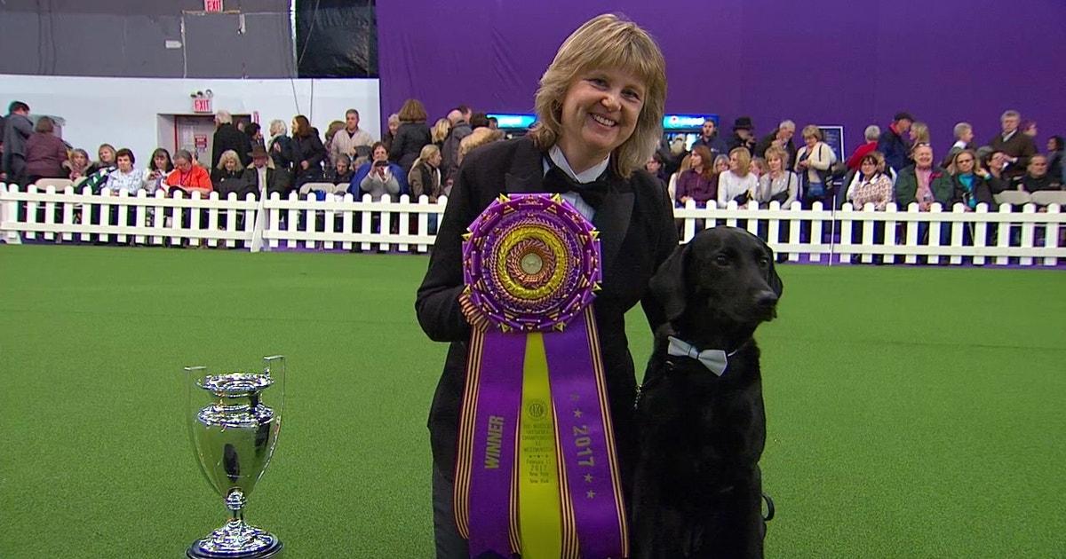 Obedience Winner 2017 Westminster Dog Show Fox Sports