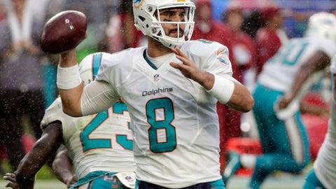 Matt Moore, Dolphins