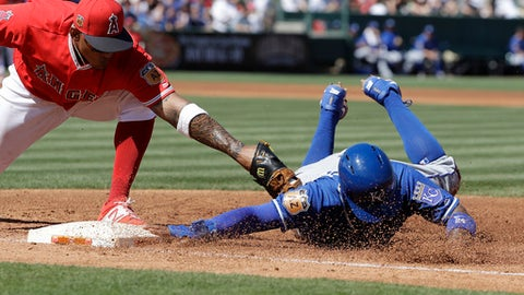Kansas City Royals' Christian Colon, right, dives safe back to first before the tag of Los Angeles Angels' Jefry Marte during the third inning of a spring training baseball game Sunday, March 26, 2017, in Tempe, Ariz. (AP Photo/Darron Cummings)