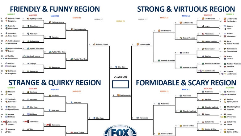 College basketball team nickname bracket: Vote now in the championship