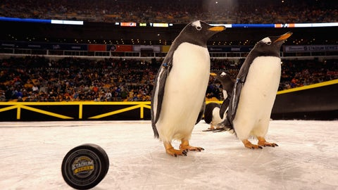 PITTSBURGH, PA - FEBRUARY 25:  Penguins walk around the auxiliary rink before the start of the 2017 Coors Light NHL Stadium Series game between the Philadelphia Flyers and the Pittsburgh Penguins at Heinz Field on February 25, 2017 in Pittsburgh, Pennsylvania.  (Photo by Dave Sandford/NHLI via Getty Images)