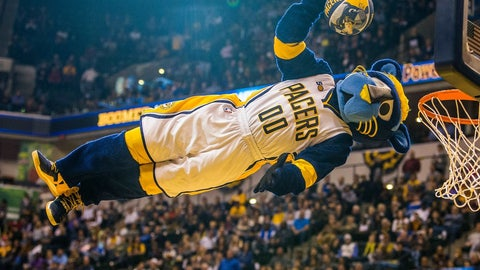 Indiana Pacers: Boomer the Cat