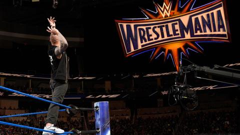 Bray Wyatt vs. Randy Orton for the WWE World Championship