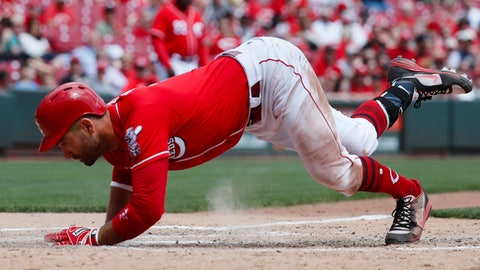 Cincinnati Reds' Joey Votto hits the dirt after being hit by a pitch by Milwaukee Brewers starting pitcher Wily Peralta in the sixth inning of a baseball game, Sunday, April 16, 2017, in Cincinnati. The Brewers won 4-2. (AP Photo/John Minchillo)