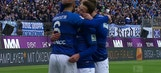 Darmstadt vs. FC Schalke 04 | 2016-17 Bundesliga Highlights