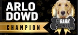 Kings Live: Arlo Dowd wins Bark Madness