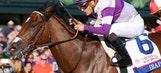 Kentucky Derby horse or Coachella act?