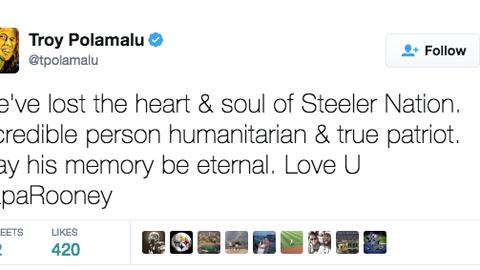 Troy Polamalu, former Steelers safety