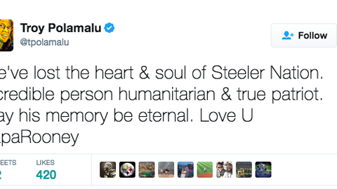 Troy Polamalu, former Steelers safety