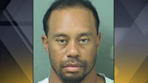 Tiger shouldn't have put himself in this situation