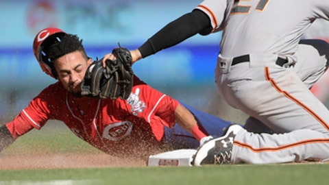 CORRECTS SPELLING OF NAME TO CONOR NOT CONNOR Cincinnati Reds' Billy Hamilton is caught stealing and tagged out by San Francisco Giants third baseman Conor Gillaspie during the fifth inning of a baseball game, Sunday, May 7, 2017, in Cincinnati. (AP Photo/Michael E. Keating)