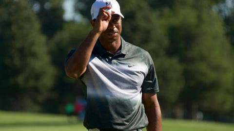 Tiger sank to a new low today
