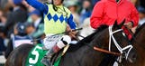 Kentucky Derby winner Always Dreaming heads field of 10 for 2017 Preakness Stakes