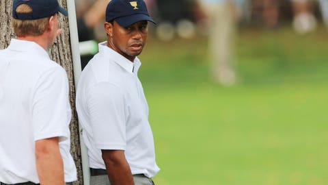 Tiger may not have been drinking, but he was still risking lives