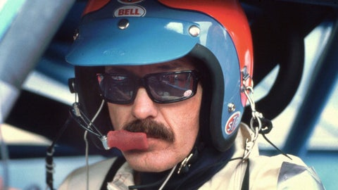 Richard Petty, 1980