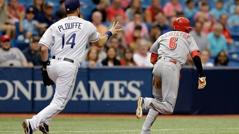 Tampa Bay Rays third baseman Trevor Plouffe (14) chases Cincinnati Reds' Billy Hamilton (6) after Hamilton was caught in a rundown during the fourth inning of a baseball game Wednesday, June 21, 2017, in St. Petersburg, Fla. Hamilton was eventually tagged out. (AP Photo/Chris O'Meara)