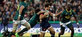 Springboks back: Clinch 3-0 series whitewash over France