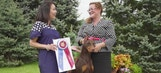 Road to Westminster (RTW): Ladies Kennel Assoc. of Am. Best In Show
