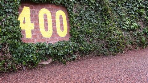Wrigley Field ivy