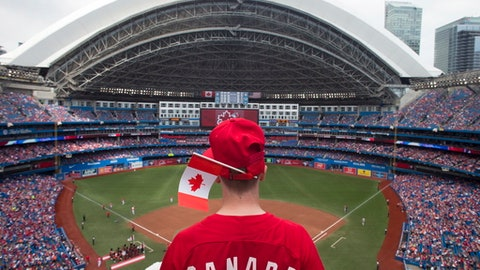 A fan looks down on the field before a baseball game between Toronto Blue Jays and Boston Red Sox in Toronto on Saturday, July 1, 2017. (Chris Young/The Canadian Press via AP)