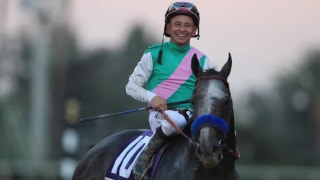 Meet one of the top horses in the world, Arrogate