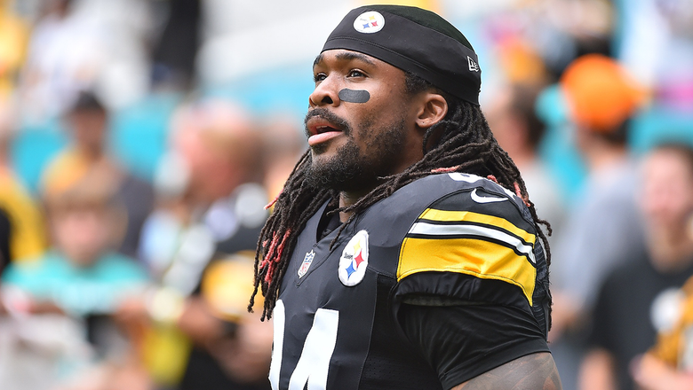 Steelers RB DeAngelo Williams not a fan of Cowboys Nation