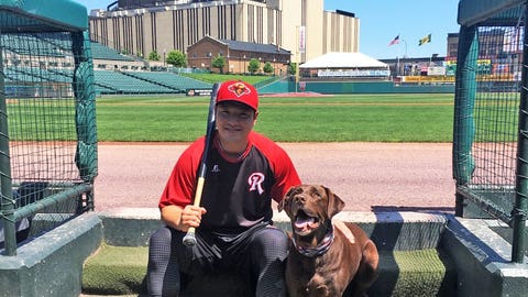 Rochester Red Wings, Twins Triple-A affiliate