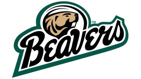 17. Bemidji State Beavers