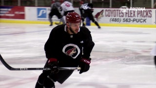 Jason Demers eager to fit in with Coyotes