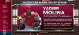 Yadier and Wanda Molina start GoFundMe for hurricane relief
