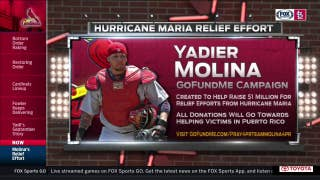 Yadier and Wanda Molina start GoFundMe for hurricane relief