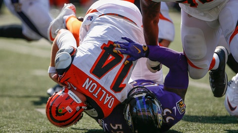 FILE - In this Sept. 10, 2017, file photo, Baltimore Ravens outside linebacker Terrell Suggs (55) sacks Cincinnati Bengals quarterback Andy Dalton (14) during the second half of an NFL football game in Cincinnati. Cleveland Browns quarterback DeShone Kizer hits the road for the first time, against a Ravens defense that last week harassed veteran Dalton from start to finish. (AP Photo/Gary Landers, File)